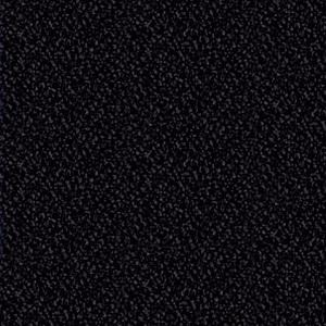 ev-11-schwarz