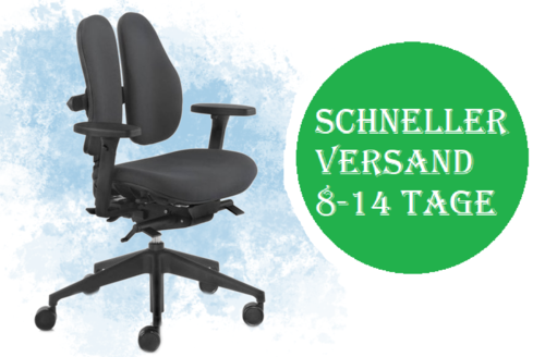 Rohde Grahl Duo Back Swivel Chair UPH/PLASTIC QS