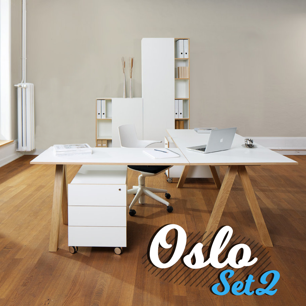art_office_shop_reinhard_oslo_set_2_Bild